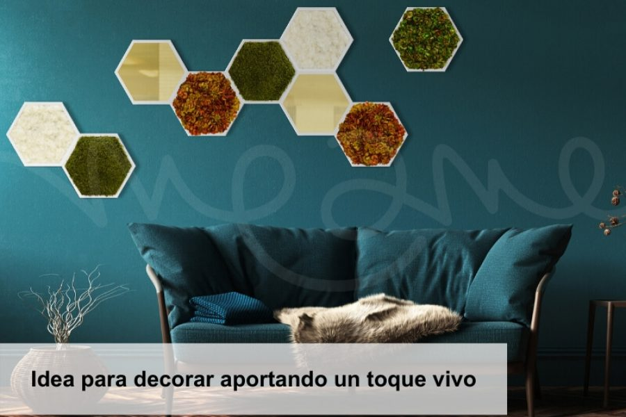 Idea para decorar aportando un toque vivo